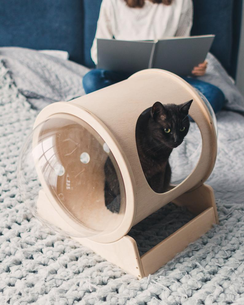 Unique Pet Bed Ideas for Pets