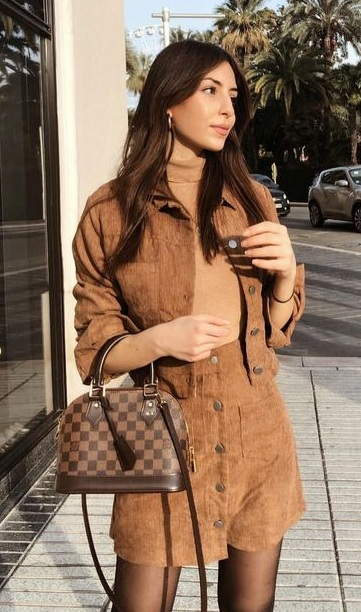 Brown Chic Outfit Styled With a cute LV Alma Bag