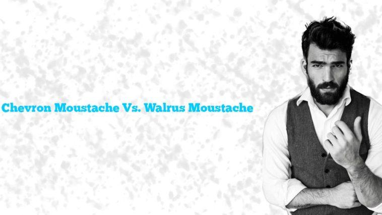 Chevron Moustache Vs. Walrus Moustache: Moustache Wars