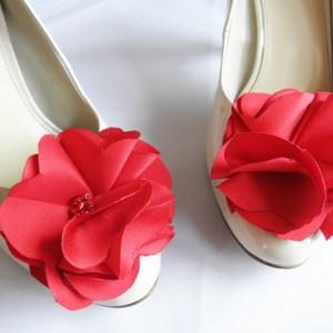 clipsuri de pantofi sash