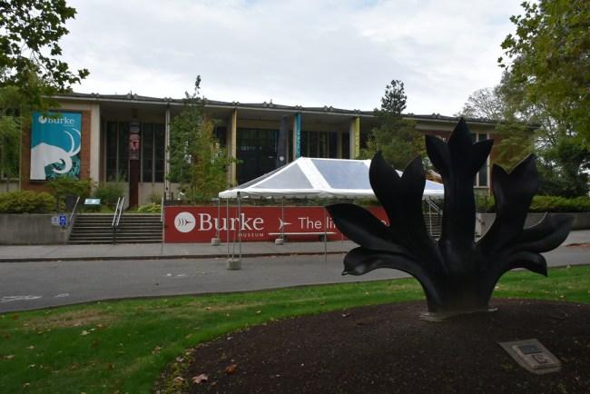 The Burke Museum as it is today. (Antoine Sipos)
