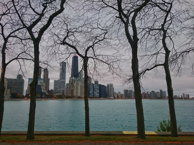 View of the Chicago skyline. Photo by Sarah Oberklaid.