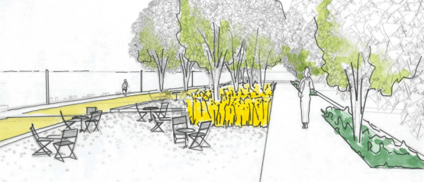 Sketch of the picnic terrace next to Boat Street. (Walker/Macy / City of Seattle)