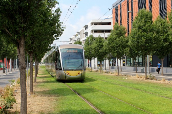 A modern tram runs along grass in Nice with midrise building and trees flanking.