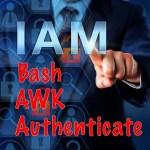 Authenticate Bash script awk