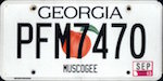 Image of the Georgia state license.