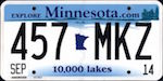 Image of the Minnesota state license.