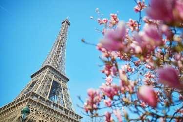 Paris Nice Vacation Rentals, VRTG