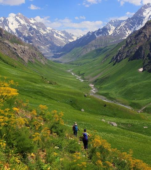 A lush valley in the Pamir Mountains (Surat Toimastov)