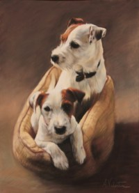 Pet portrait in Pastels of dogs by Annabelle Valentine