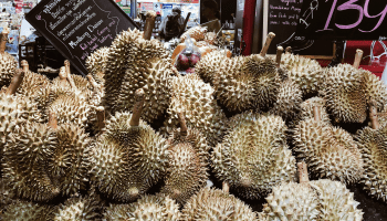 Eating Durian for the First Time | The Vegan Abroad