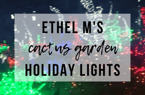 Ethel M's Cactus Garden Holiday Lights | www.thevegasmom.com