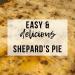 Shepard's Pie   www.thevegasmom.com