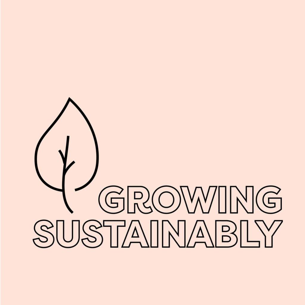 Growing Hemp Sustainably