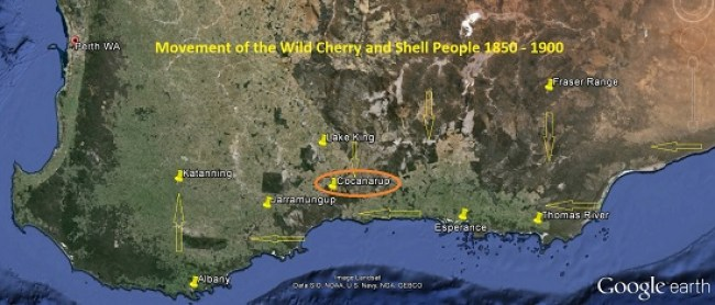 Movement of wild Cherry and Shell People 1850 - 1900