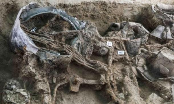The hoard had lain undiscovered for thousands of years. (Pierluigi Giorgi / © Antiquity Publications Ltd )