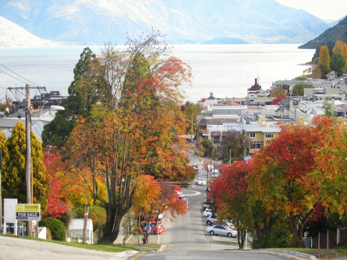 Fall foliage in Queenstown