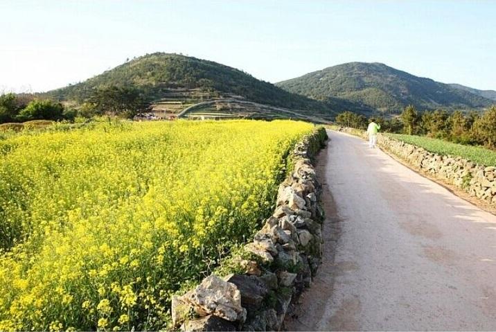 17 lokasi menarik untuk dikunjungi di pulau jeju korea