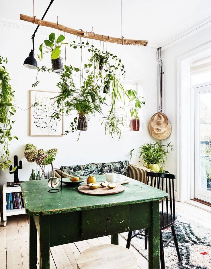 dining room garden 6