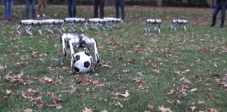 MIT's Biomimetic Robotics Labratory, which sits across the lawn from the school's iconic main building, created these so-called mini cheetahs, four-legged robots that are powered by 12 motors.