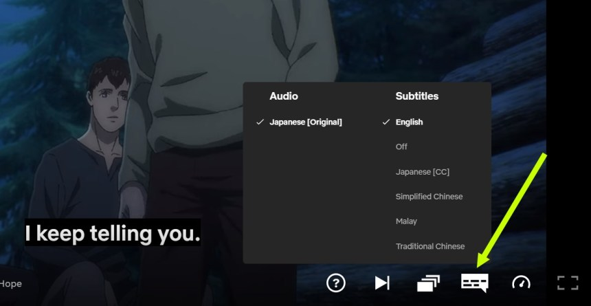 Subtitles Attack on Titan