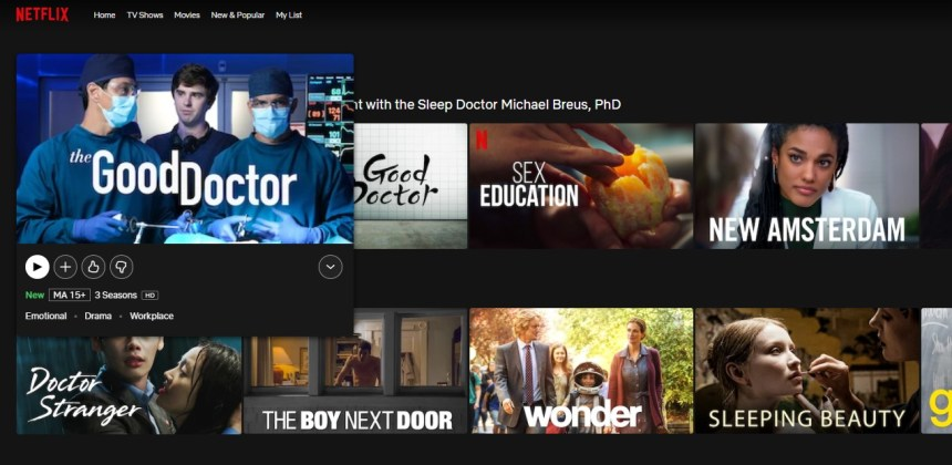 The Good Doctor on Netflix