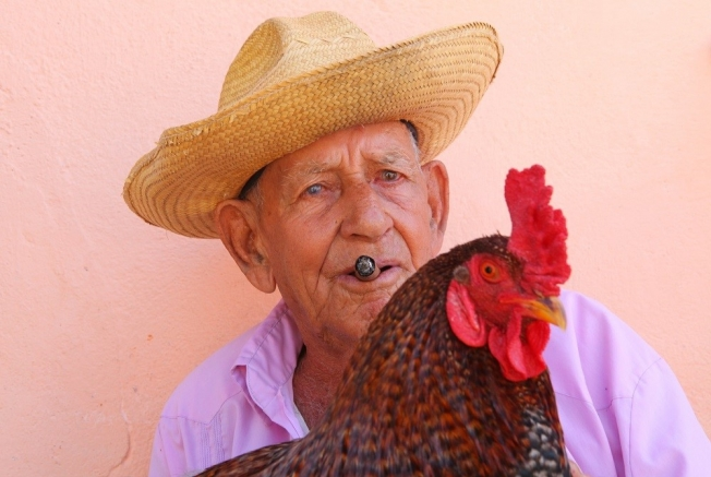 Cuba (101)