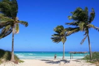 Cuba (103)
