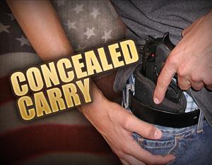 concealed carry artwork