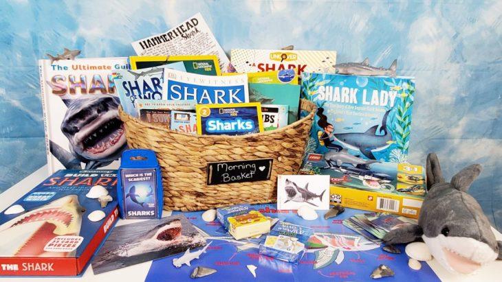 Shark Themed Morning Basket