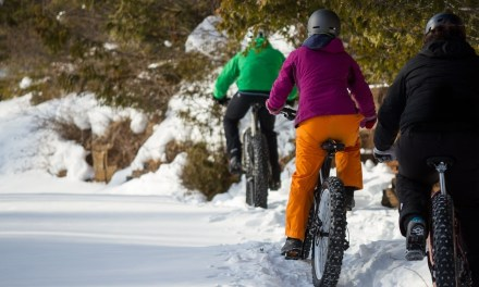 Phat Fun on Fat Bikes