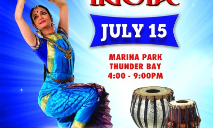 Festival of India 2014
