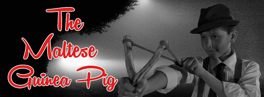 Help The Maltese Guinea Pig Make it to the Big Screen: A Local Filmmaker's Indiegogo Campaign