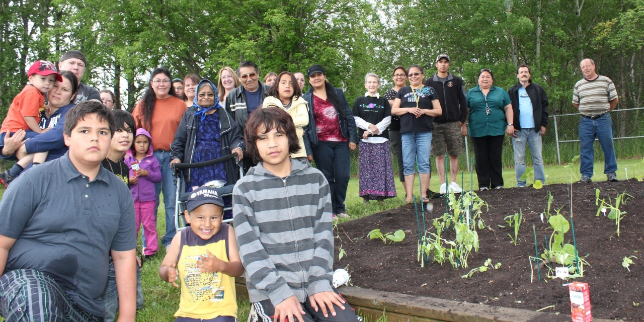 Growing Together with the Community: ONWA Plants Annual Garden