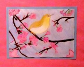Caiti Dye, Spring Cherry Blossoms