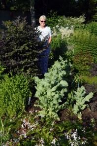 Master Gardener Wyoma Fauconnier in her Meryle Street garden.