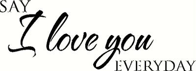 Say I Love You Everyday (2) wall sticker, vinyl decal