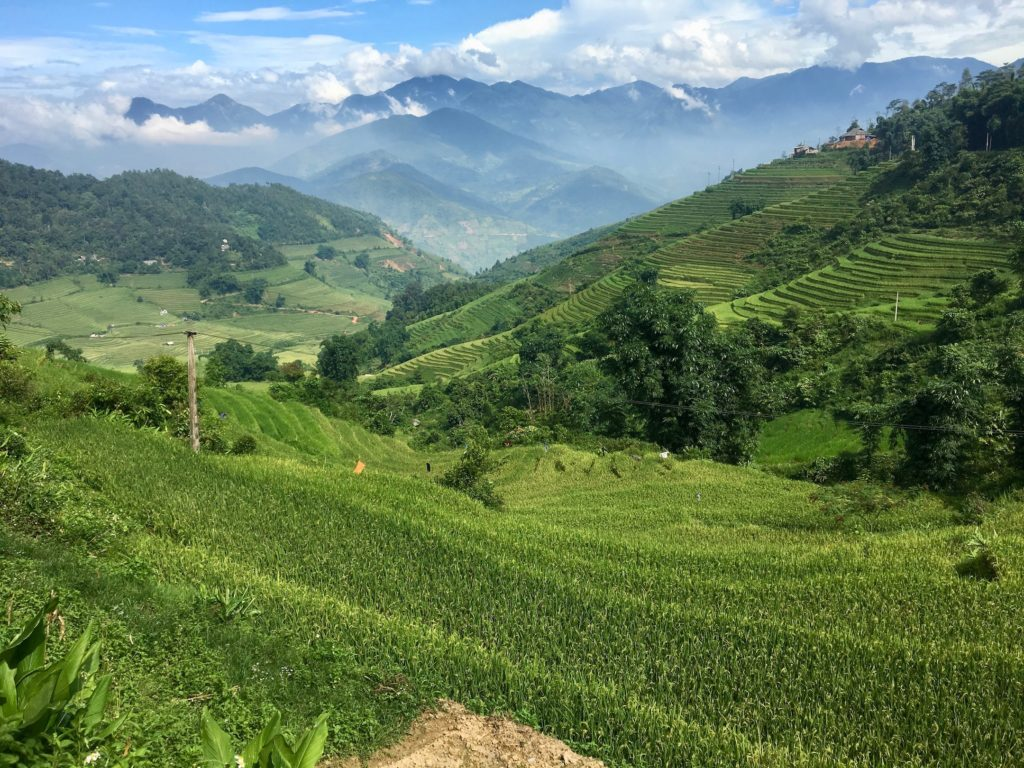 Sapa, Vietnam • A Tale of Two Lovebirds: Sophie and Sapa | The Wanderful Me