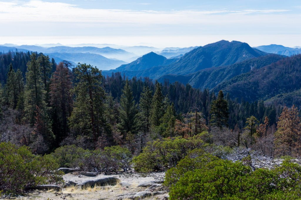 Views at Sequoia National Park • Useful Things to Know Before Visiting Yosemite and Sequoia in the Winter | The Wanderful Me