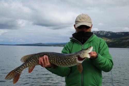 The Wandering Angler - Yukon Lodge0017 (3)