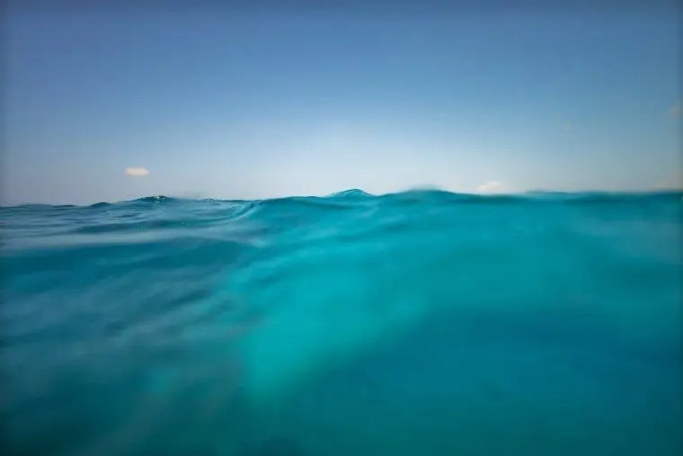Underwater in the Maldives - The Wandering Lens