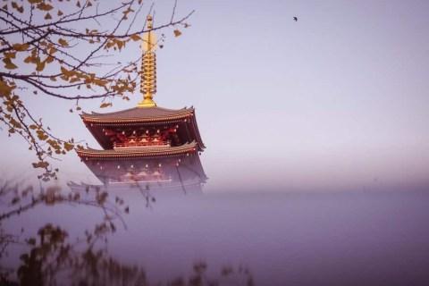 Sunrise photography at Sensoji Temple, Asakusa Tokyo with Lisa Michele Burns of The Wandering Lens