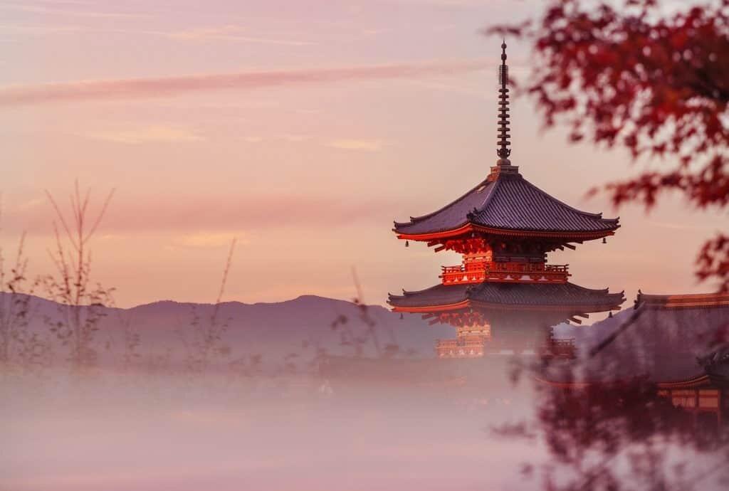 Japan Photo Tour 2018 Tokyo, Kyoto + Arashiyama in Autumn!
