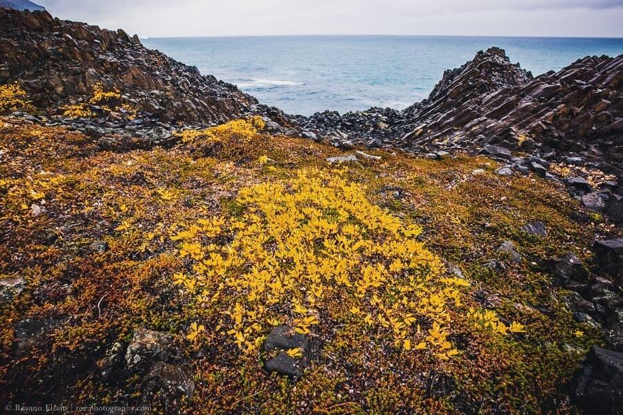Basalt rock formations along the coast of Qeqertarsuaq in Greenland