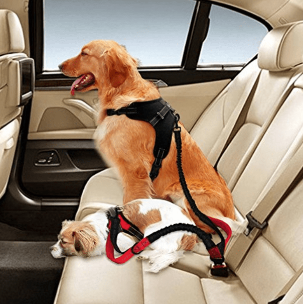 Car Seat Belt Harness for Dogs