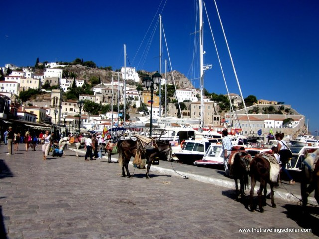 Donkeys on Hydra