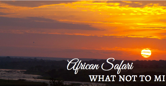 What not to miss on African Safari
