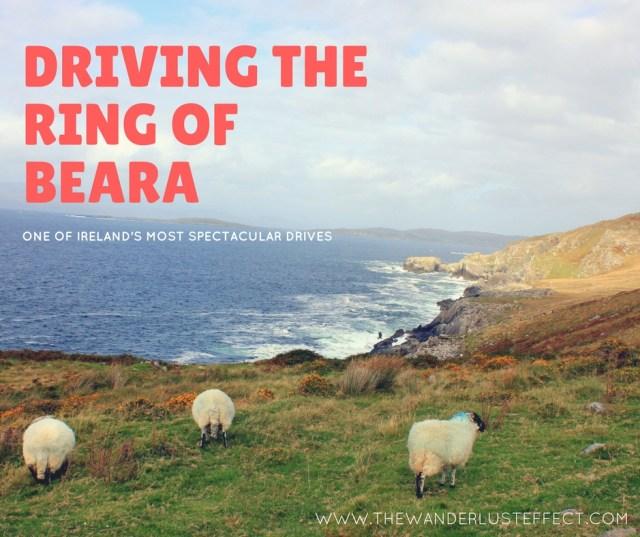 Ireland: Driving the Ring of Beara