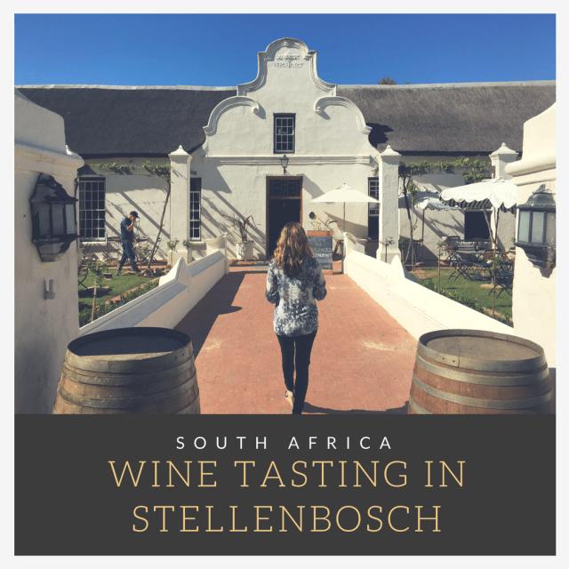 Wine Tasting in Stellenbosch, South Africa