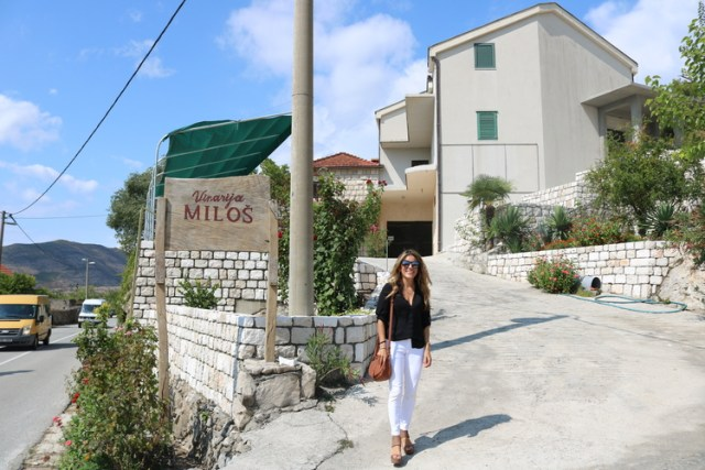 Milos Winery, Wine Tasting on the Peljesac Peninsula